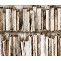 Beige crumpled bookshelves Bibliotheque Trompe l'oeil wallpaper by Couture Déco