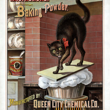 International Baking Powder Queen City Chemical Cat Poster