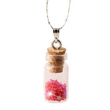 Women Chain Pendant Necklace Star Glass Wishing Bottle Long Necklaces Charms Gift Women Jewelry Choker Collares DIY N2121