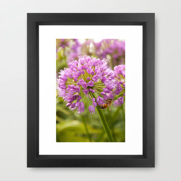 Honey Bee Mine Framed Art Print by Legends of Darkness Photography