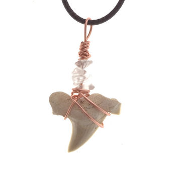 Real Shark Tooth Necklace / Shark Tooth with Quartz Copper Wire / Shark Tooth Jewelry, Shark Tooth Pendant / Fossil Jewelry / Shark Teeth
