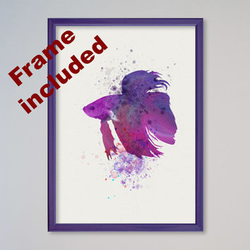 Aquarium Fish Betta Watercolor Print Watercolor Picture Illustration Art Watercolor Animal Fish Art Fish Lovers Gift Present FRAMED Poster