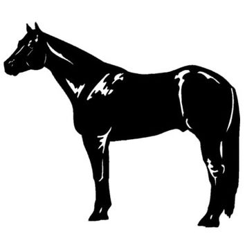 Horse-Vinyl wall decal-Horse sticker-Quarter horse-24 X 28 inches