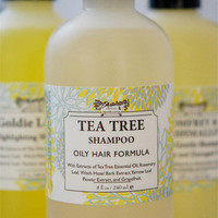 Natural Tea Tree Oil Shampoo- for Oily Hair & Scalp - Liquid Castile Shampoo - Crisp Clean Fragrance