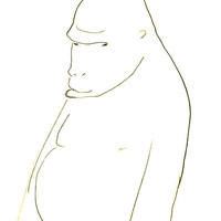 Line Drawing Of A Western Gorilla