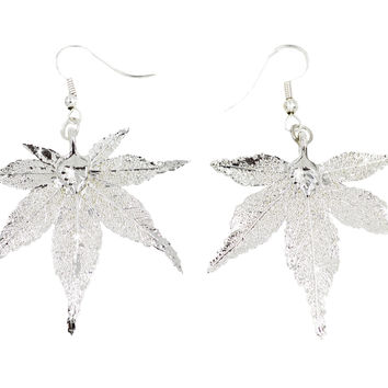 Real Leaf Hook Drop Earrings Japanese Maple Dipped in Silver Genuine Leaf