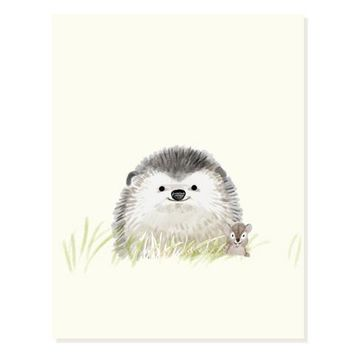 Lil Hedgie