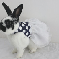 Polka dot navy and white harness dress with D-ring attachment so you can attach a leash for walkies