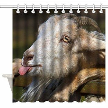 72 x 72 Inch Shower Curtain Custom, Naughty Goat Sending Tongues Funny Face