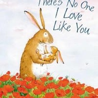 There's No One I Love Like You by Jutta Langreuter Illustrated by Stefanie Dahle