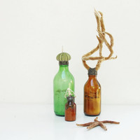 Sea Life Bottle - Sea Plant, Shells, Sand, Brown Glass