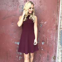 Mission Possible Skater Dress In Wine