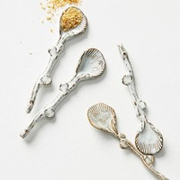 Ceramic Shell Spoon Set