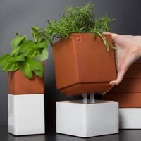 Growing Herbs Indoors from Cult Kitchen Farming, Evergreen Herb Pot Large