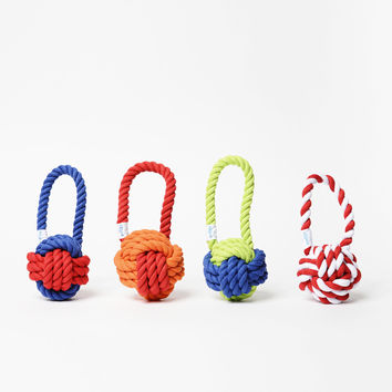 Have a Ball Rope Dog Toy