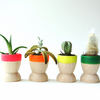 Mini Planters, Neon Rainbow {Set of 4}