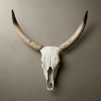 Steer Horns in Cast Resin | Animal Motifs | Restoration Hardware