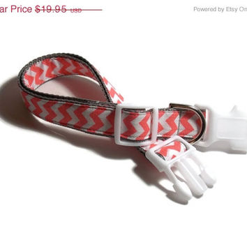 ON SALE Coral Chevron on Gray Dog Collar