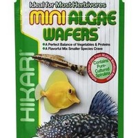 Hikari Tropical Mini Algae Wafers for Bottom Feeders .77 oz