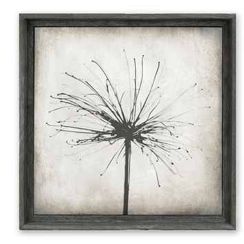Rustic Home Decor, Large Framed Art, Woodland, Silhouette, Neutral Decor, Giclee Canvas, Solid Backing, Ready To Hang - Nature's Sparkler