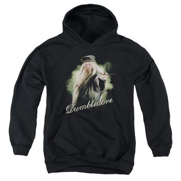 Harry Potter - Dumbledore Wand Youth Pull Over Hoodie