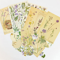 Lilac Flowers Vintage paper pack, Purple floral themed paper ephemera pack - paper ephemera lot - craft supplies