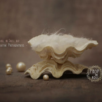 Newborn Digital Backdrops, newborn digital backdrop, digital prop, Baby pearl, Shell bed prop,photographie bébé,Neugeborene,recién nacido