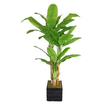 "78"" Artificial Banana Tree with Real Touch Leaves in 14"" Black/Grey Square Fiberstone Planter"