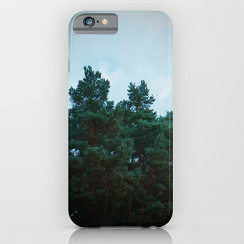 Pines #2 iPhone & iPod Case by Julius Marc