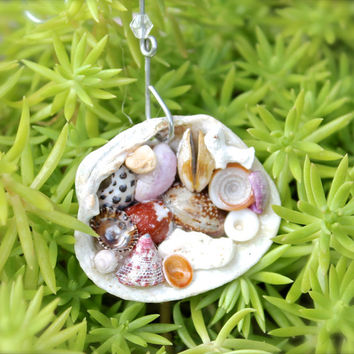 Hawaii Christmas Ornament - Shell Ornament from Hawaii - Seashell Decor made in Hawaii - Hawaiian Seashell Ornament by Mermaid Tears