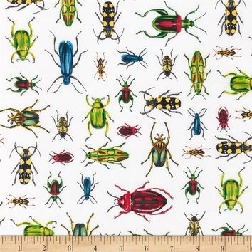 Kaufman Everyday Favorites Bugs White