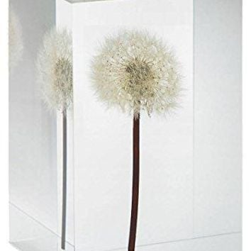 Dandelion Objet D'Art MoMA Exclusive/MoMA Best Seller: Home & Kitchen
