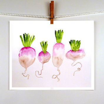 Turnip Paintings - A Print of a Watercolor Painting - Vegetable Painting Food Art - Kitchen Decor Wall Lavender Emerald - 9x12