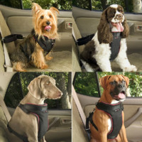 Adjustable Safety Pet Seat Belt