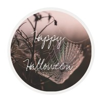 Halloween Cobweb with Dried Twigs Edible Frosting Rounds