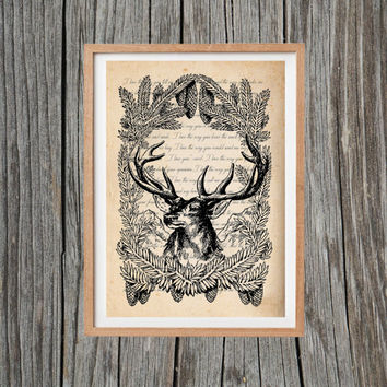 Vintage Deer Print Animal Poster Print Antique Wall Art