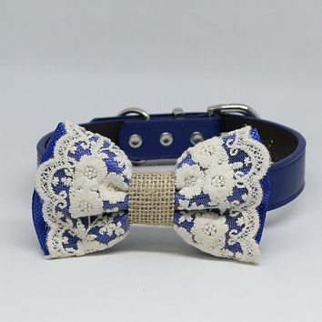 Royal blue Lace Dog Bow Tie collar, Some thing blue Handmade dog collar, Royal blue Lace bow tie