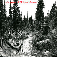 wolf laying in forest trees landscape original art print ink black and white art