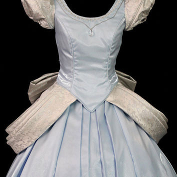 Adult Cinderella Parks Version Costume Custom Made