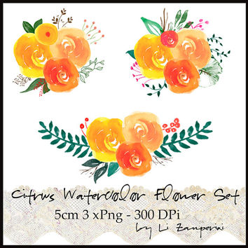 Hand Painted Digital PNG Clipart, Watercolor Bouquet  Clipart Watercolor Flowers - 3x - Floral -Instant Download