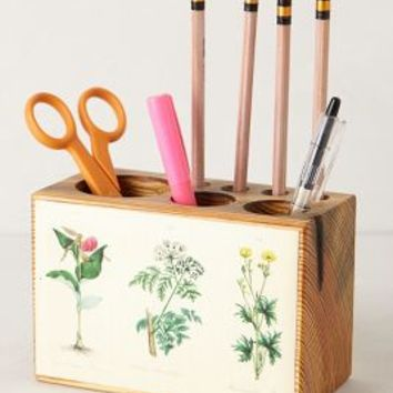 Pine Desk Caddy by Peg & Awl Pearl One Size Furniture