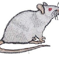 Fancy Albino White Rat Steam Punk  Iron on Patch