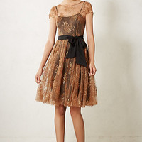 Honeyed Lace Dress