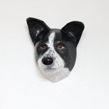 3D Custom pet portrait, dog portrait / wall mount, art scullpture, faux taxidermy