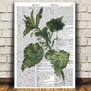 Nettle poster Kitchen art Watercolor print Herb print RTA1631