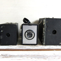 instant collection / vintage Cameras for display