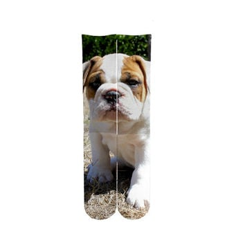 English Bulldog puppy socks, bulldog knee high socks, english bulldog, socks, unisex, British Bulldog, puppy, knee high socks