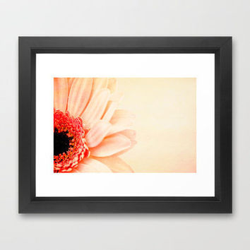 Pretty In Peach II Framed Art Print by secretgardenphotography [Nicola] | Society6
