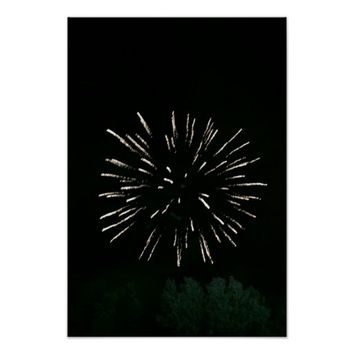 Fireworks with Tree Poster