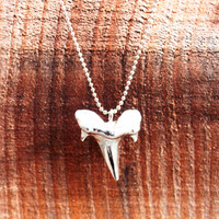 Silver Shark Tooth Pendant Necklace